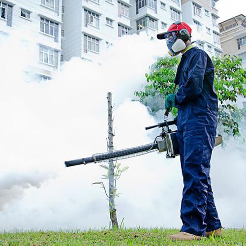 專業滅蟲及消毒服務